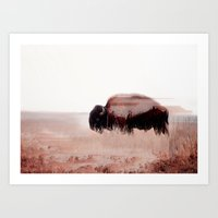 buffalo Art Prints featuring Buffalo by Okti