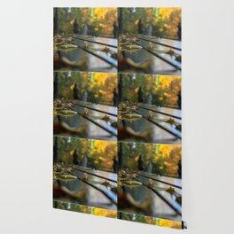 NYC Park Bench Wallpaper
