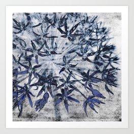 blue stars Art Print