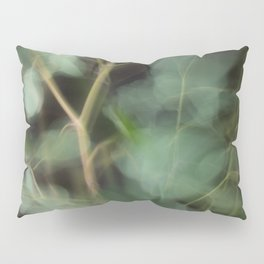 Abstract Eucalyptus Leaves on Black Background-Fleur Blur Series Pillow Sham