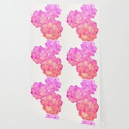 Rosette Succulents – Pink Palette Wallpaper