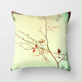Turn, Turn, Turn  Throw Pillow