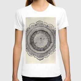 Spruce Branch T-shirt