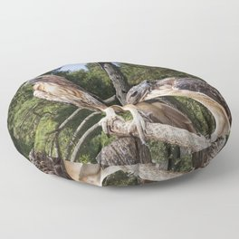 Pair of Red-tail Hawks Floor Pillow
