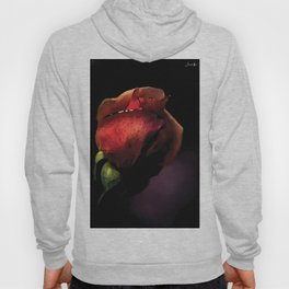 Rose encore fermée colors fashion Jacob's Paris Hoody