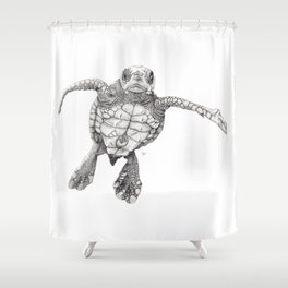 Chelonioidea (the turtle) Shower Curtain