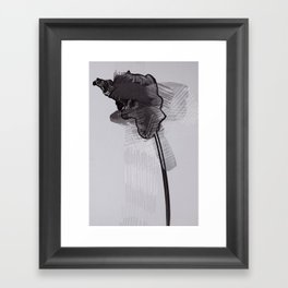 leaf thirteen  Framed Art Print