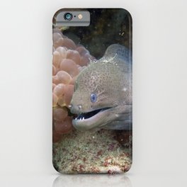 Moray Eel iPhone Case