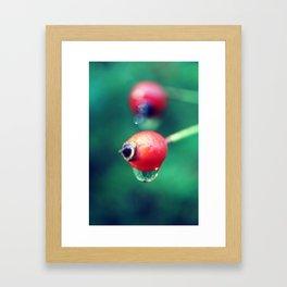 Berrys dew Dripping Framed Art Print
