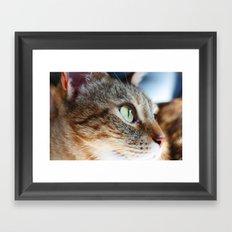 Beastie Boy Framed Art Print