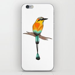 Motmot Bird Water Color & Ink Illustration iPhone Skin