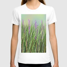 Lavenders T-shirt