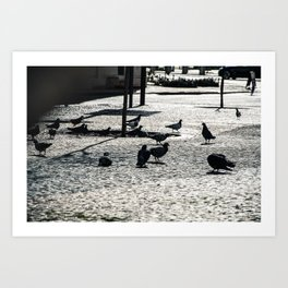 Pigeon lunch time Art Print