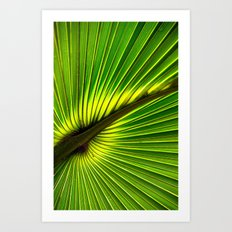 Green Burst Art Print