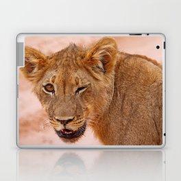 Winking lion - Africa wildlife Laptop & iPad Skin