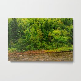 495nm riparian zone Metal Print