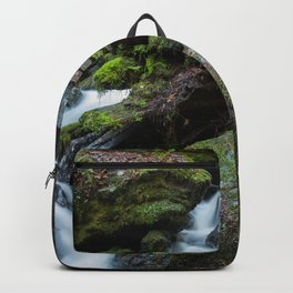 Separate But One Backpack