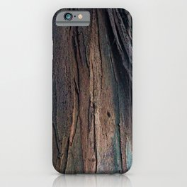 Eucalyptus Tree Wood  Bark Abstract Colorful Texture iPhone Case