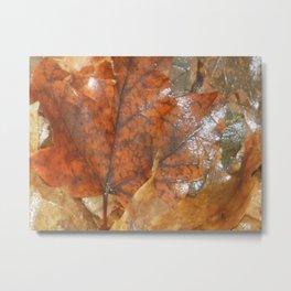 Wet Golden Fallen Leaves Metal Print