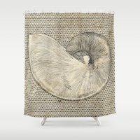 seashell Shower Curtains featuring SEASHELL by Mary Szulc