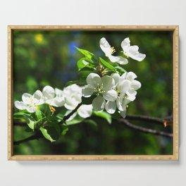 Apple blossom Serving Tray