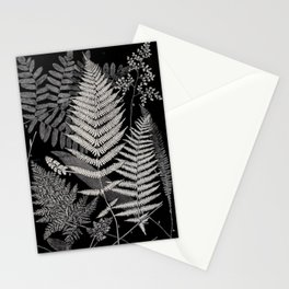 Botanical Ferns Stationery Cards