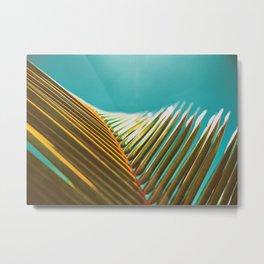 Palm Leaf in Detail Metal Print