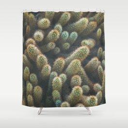 Botanical Gardens Cactus #596 Shower Curtain