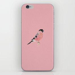 Siberian Bullfinch (rose palette) iPhone Skin