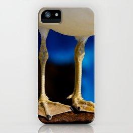 Flipper iPhone Case
