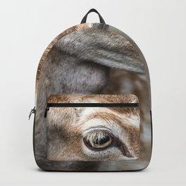 Spotted Deer Backpack