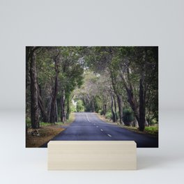 long road home Mini Art Print
