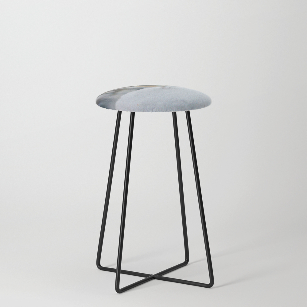 Robin Redbreast Counter Stool with Black Legs by Valzart (CST3880308) photo