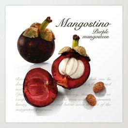 Mangostino Art Print