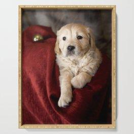 Labrador Puppy Serving Tray