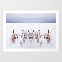 plain Art Prints featuring Winter Plain by Reimerpics