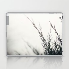 winter's light Laptop & iPad Skin