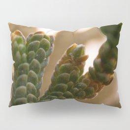 Resurrection moss Pillow Sham