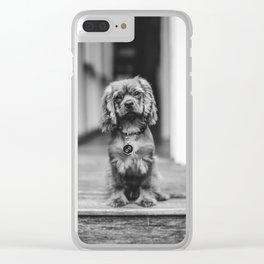 Cute puppy by Gez Xavier Mansfield Clear iPhone Case