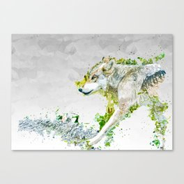 Why Look Both Ways Canvas Print