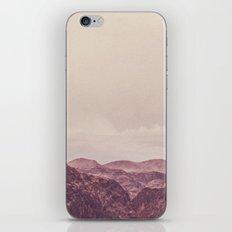 Vintage Desert iPhone & iPod Skin