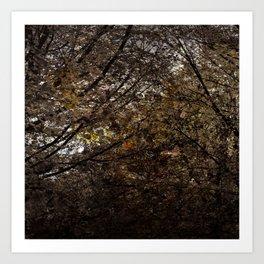 forest - tree Art Print
