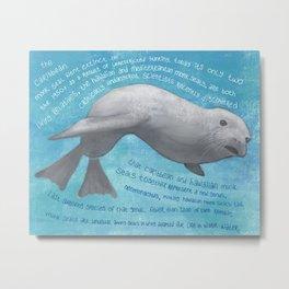 Caribbean Monk Seal Metal Print