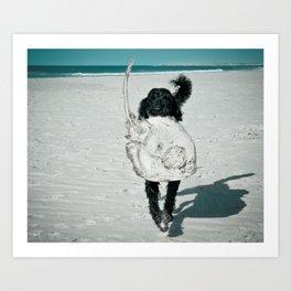 Floatsam Art Print
