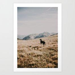 WILD TULA /// Soak it in Art Print
