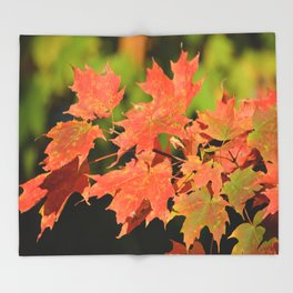Fall Autumn Maple Leaves Red Orange Autumnal Colors Throw Blanket