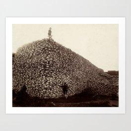 Bison skull  Art Print
