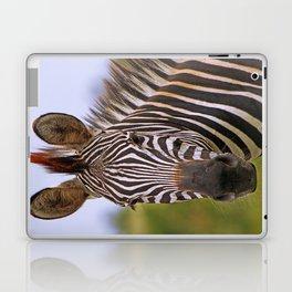 Zebra portrait, Africa wildlife Laptop & iPad Skin