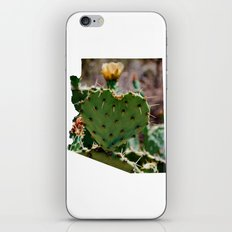 Sonoran Love / Arizona iPhone & iPod Skin