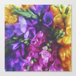 Freesias Canvas Print